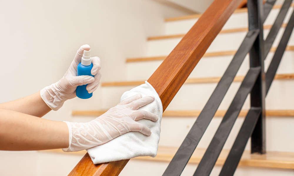 Un hogar limpio evita las plagas